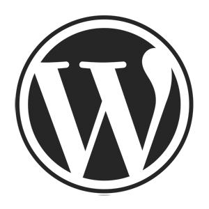 5 Ways to Power up Your WordPress Blog